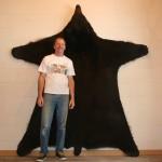 Steve's bear 003